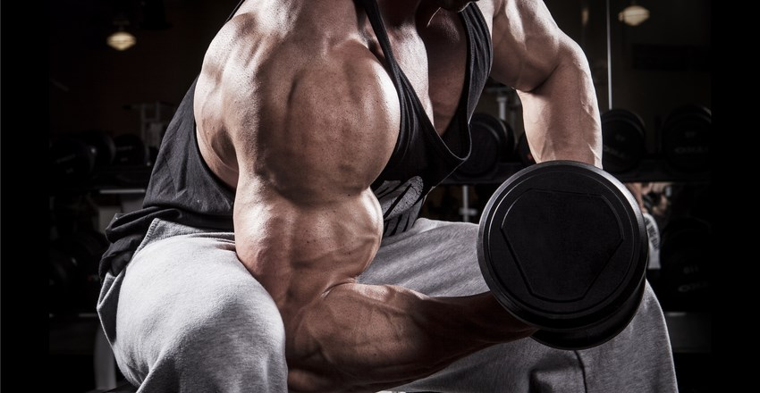 How To Gain On A Budget Maximuscle