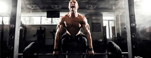 Add Mass Best Supplements For Bulking Maximuscle