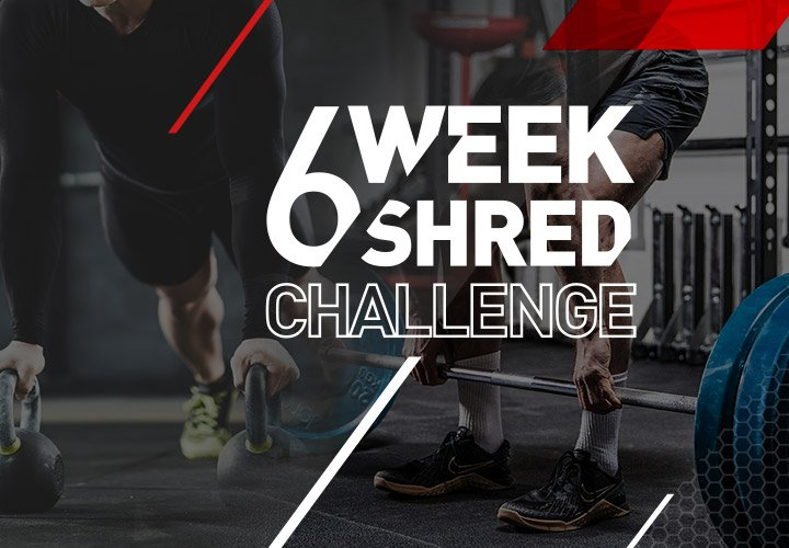 6 Week Shred-Homepage Banner-Mobile